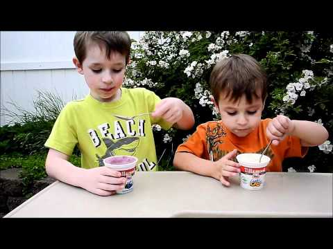 Zane & Zarek Review Tillamook Light Yogurt with Truvia