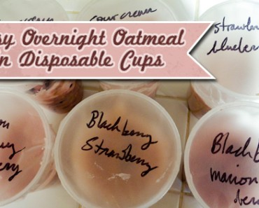 Easy Over Night Oatmeal in Disposable Cups