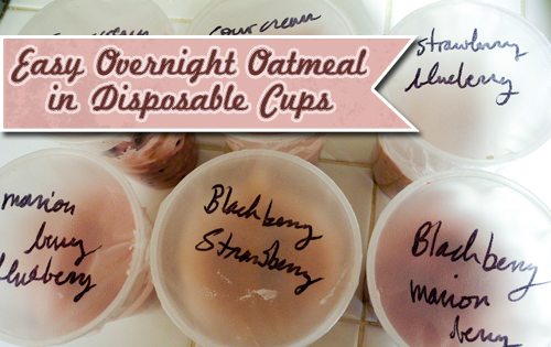 Easy Overnight Oatmeal in Disposable Cups
