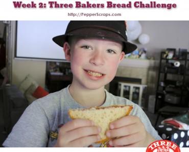 GlutenFree Fast Three Bakers Bread Challenge