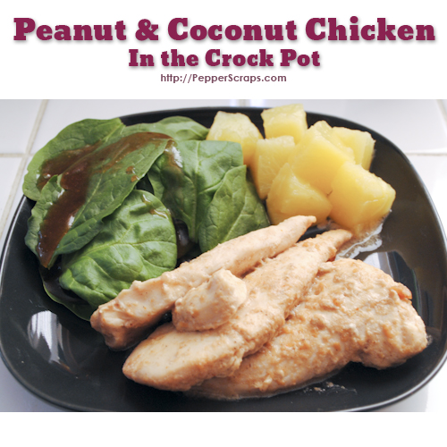 Peanut and Coconut Chicken in the Crock Pot