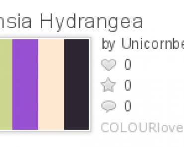1302939_Fuchsia_Hydrangea