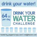 water-challenge-2013-button
