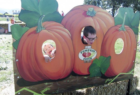 pumpkinpatch_10