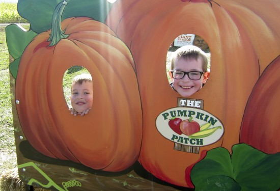 pumpkinpatch_9