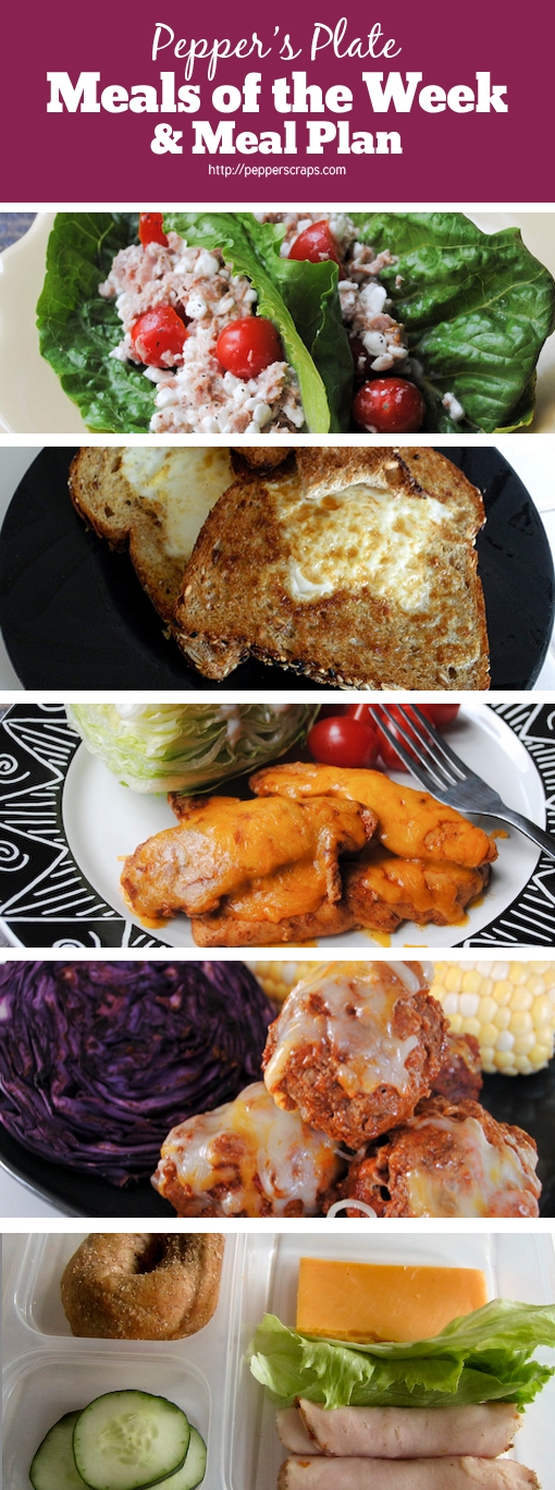 Post Meals of the Week and Menu Plan 119